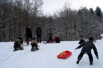 Juffifahrt 2010